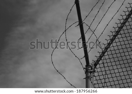 barbed wire and chain link fence at Alcatraz Island in San Francisco - stock photo