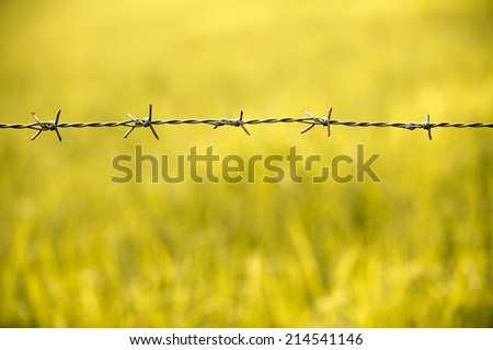 Barbed wire fence in nature field - stock photo