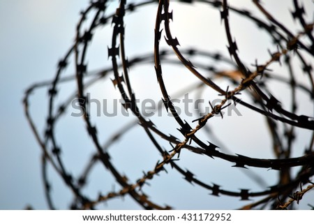 Barbed wire - great for topics like prison, captivity etc. - stock photo