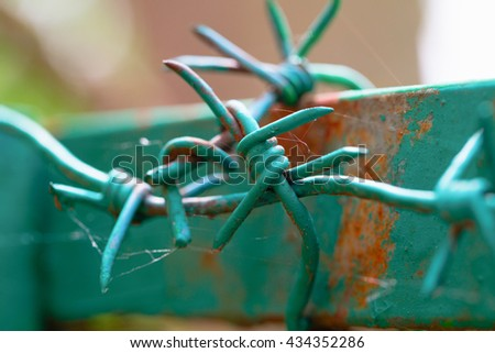 Barbed wire on the top part of a fence. A fence frame from an iron profile, the fence and a wire are painted green color. Close up, small depth of sharpness