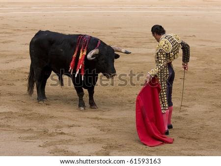 Spanish Bull of Bulls Typical Spanish
