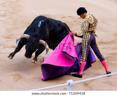 "BARCELONA - JUNE 6: Finito de Cordoba in action during a ""corrida de toros"", typical Spanish tradition where a ""torero"" kills a bull. June 6, 2010 in Barcelona (Spain). - stock photo"
