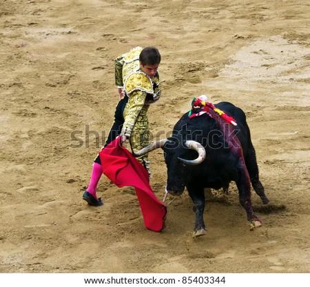 BARCELONA - SEPTEMBER 24:Julian Lopez El Juli in action during a corrida de toros or bullfight, typical Spanish tradition where a torero or bullfighter kills a bull on Septiembre 24, 2011 in Barcelona, Spain - stock photo