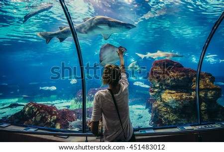 Barcelona, Spain - May 26, 2015. Woman looks at shark in Barcelona Aquarium