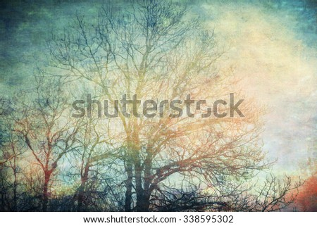 Bare cottonwood trees in fall reflected in water overlaid with canvas textures for an artistic look. - stock photo