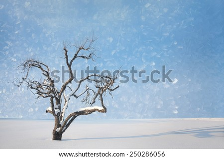 Bare tree with snow against bright clear blue sky - stock photo