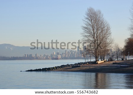 Bare trees on the shores of Vancouver's English Bay during the winter/Winter in Vancouver Canada/Bare trees on the shores of Vancouver's English Bay during the winter.