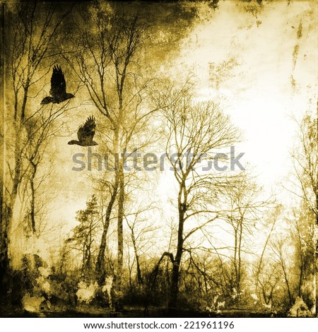 Bare trees with flying birds - stock photo