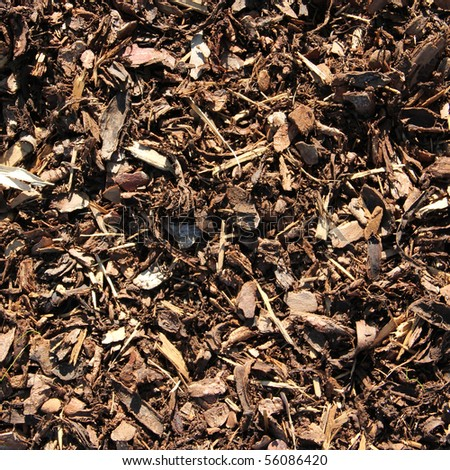 bark mulch for background - stock photo