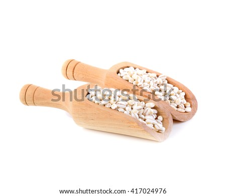 Barley grains in scoops on white background