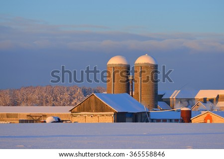Barn and grain elevators on a sunny winter day standing on a snowcovered field - stock photo