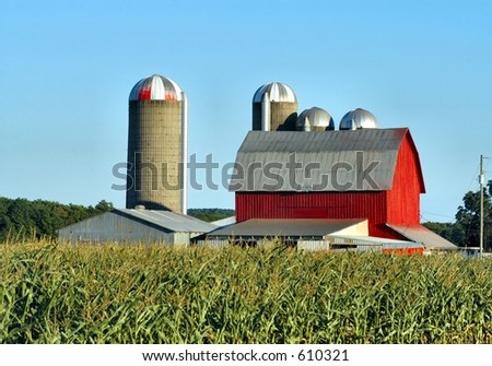 Barn and Silos in a corn field - stock photo