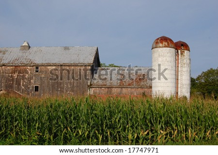 barn with silo and cornfield - stock photo