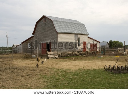 barnyards - photo #14
