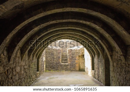 stock-photo-barrel-vaulted-basement-of-c