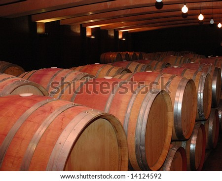 Barrels in wine cellar - stock photo