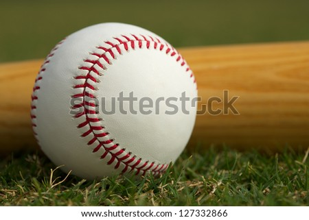 Baseball Close Up & Bat on the Grass