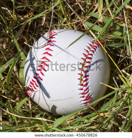 Baseball deep in the grass, square image - stock photo