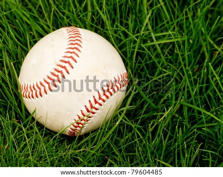 baseball in the tall summer grass