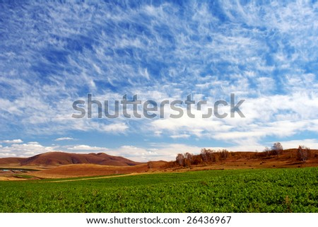 Bashang grassland in autumn, good harvest - stock photo