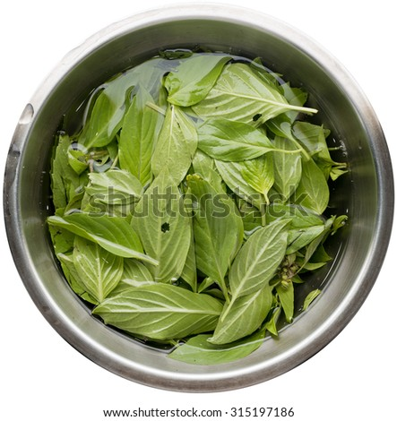Basil in a bowl of water on white background , food prepare.