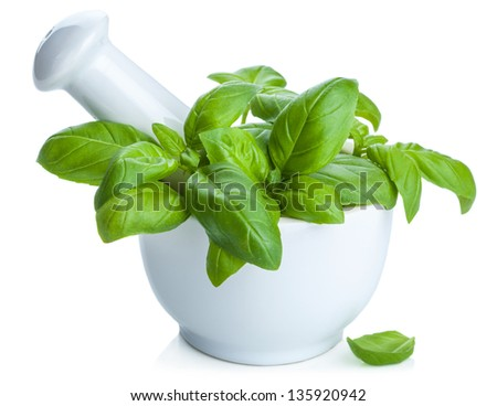 basil in mortar isolated - stock photo