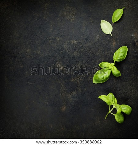 Basil leaves on darc rustic background. Background layout with free text space. - stock photo