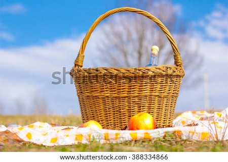 basket for a picnic in a meadow - stock photo
