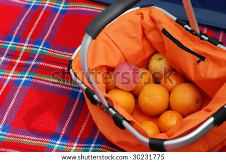 basket for the picnic  on the plaid - stock photo