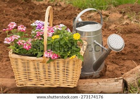 Basket full of colorful flowers ready for spring planting, with a watering can - stock photo