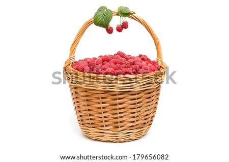Basket full of fresh red raspberry - stock photo