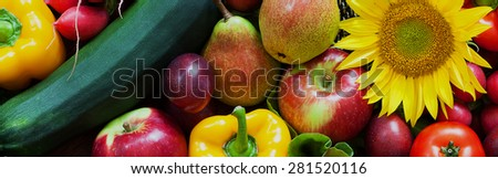 Basket full of fresh ripe vegetables and fruits - stock photo