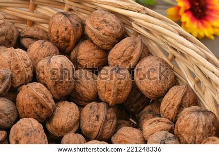 basket full of walnuts - stock photo