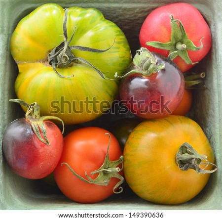 Basket of colorful heirloom tomatoes in square format - stock photo
