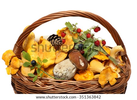 basket of forest mushrooms and berries isolated on a white background. - stock photo