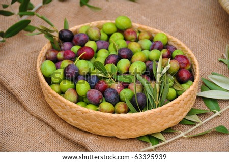 Basket of fresh olives - stock photo