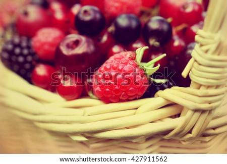 Basket of fresh ripe sweet berries, selective focus, toned - stock photo