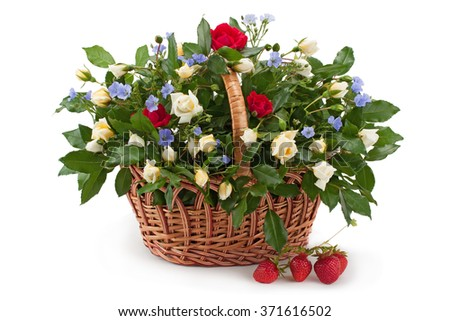 Basket of fresh white and red roses and fragrant strawberries isolated on white background.