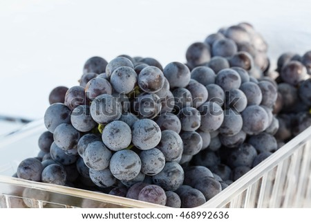 Basket of purple grapes at a vineyard in Tennessee