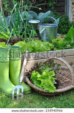 basket salad in portage with boots and tools - stock photo