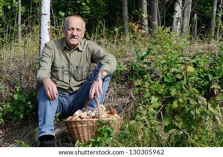 Basket with boletus edulis on a grass