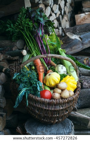 Basket with harvest on on the background of wood. Young carrots, beets, onions, colorful courgettes, cucumbers, tomatoes and other vegetables and herbs. Vegan concept. Summer season - stock photo