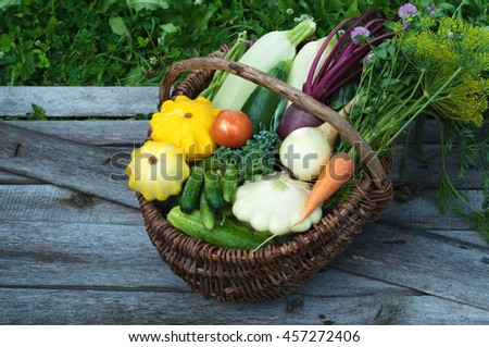 Basket with harvest on the gray wooden plank. Young carrots, beets, onion, colorful courgettes, cucumbers, tomatoes and other vegetables and herbs. Vegan concept. Summer season - stock photo