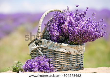 basket with lavender flowers