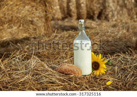 basket with milk in a haystack - stock photo