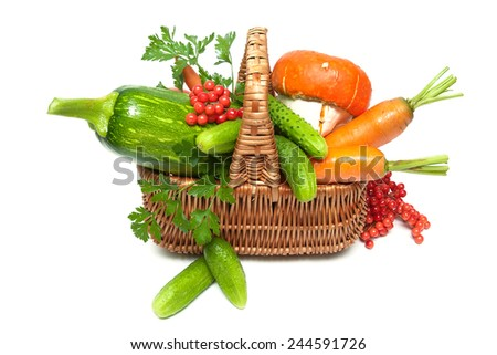 basket with vegetables and berries of viburnum close up on a white background. horizontal photo. - stock photo