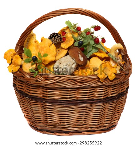 Basket with wild forest mushrooms and berries isolated on a white background. - stock photo