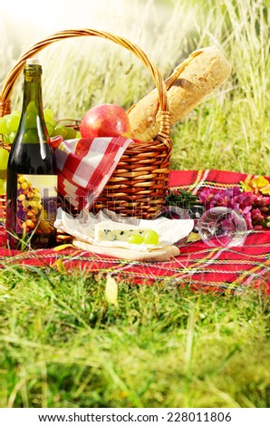 Basket with wine cheese and fruits. Picnic ideas concept - stock photo