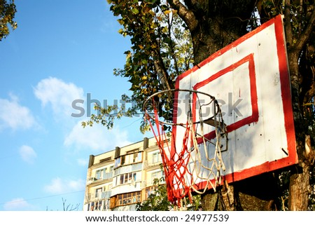 Basketball hoop with broken net is on the tree