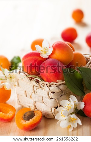 baskets with fresh ripe apricots - stock photo